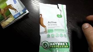 Сухой корм для собак: снимаем пробу с NATURE