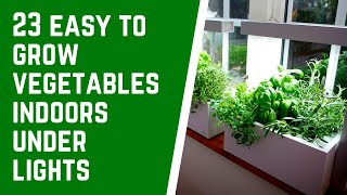 23 easy to grow vegetables indoors under lights