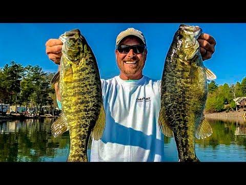 How To Catch Big Bass & Win Fishing Tournaments