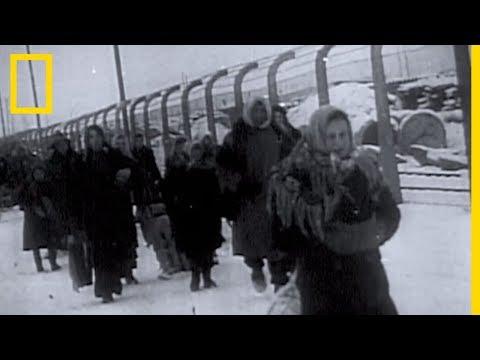 auschwitz-:-le-camp-de-l'horreur-nazie
