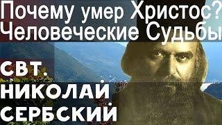 Не отчаивайся над своей Судьбой. Христос умер за Нас! Николай Сербский Свт.