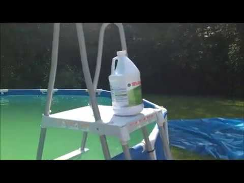 Green Algae Pool Water Treatment Before And After Youtube