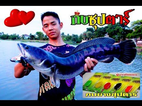 ตกปลาชะโดEPชะโดแม่น้ำท่าจีนคลั่งเขาทำแบบนี้หรือ BY Yod911