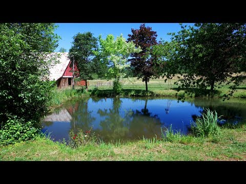 Property for Sale in Willamina, Oregon