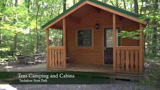 Camping options at Tuckahoe State Park