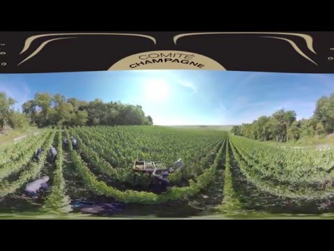 Take a 360° look at Champagne!