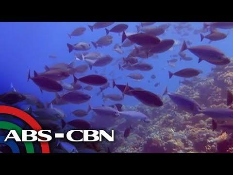 Salamat Dok: Sablayan, Occidental Mindoro   Part 2   Pasyal with Bryan