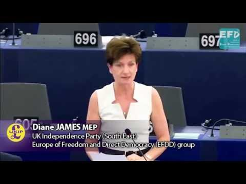 EU should end trade barriers against African agricultural products - Diane James MEP