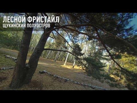 Лесной фристайл. Щукинский полуостров. \ FPV Freestyle