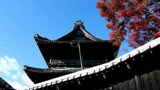 岐阜県の西南部養老山の中腹にある寺、家康公の孫松平氏の菩提寺です。