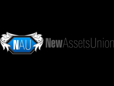 Основные плюсы инвестиционного  проекта New Assets Union