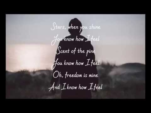 Avicii - Feeling Good (Lyrics Video)