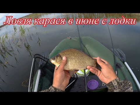 Ловля карася в июне.  Рыбалка на поплавок. Смотреть 1080p.