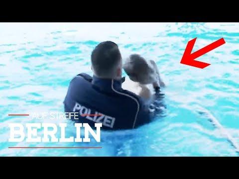Ist Sascha (8) tot? War es der gewalttätige Vater | Auf Streife - Berlin | SAT.1 TV