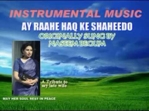 AY RAAHE HAQ KE SHAHEEDO INSTRUMENTAL BY SHAHID PARVEZ CH