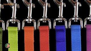 Поводок для собаки. \ Nylon Dog Leash. \ Топ шоп Али экспресс #5. Тop shop.