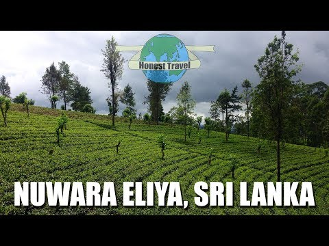 Nuwara Eliya Sri Lanka