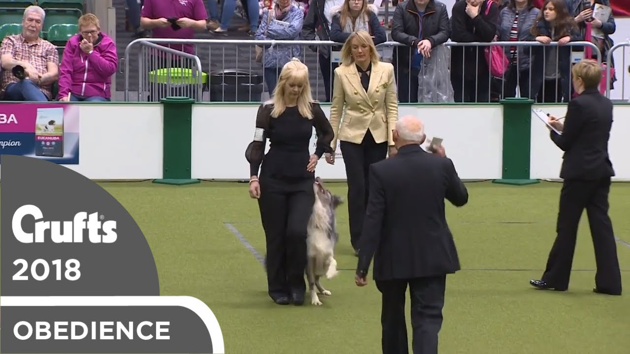 Obedience - Dog Championship - Part 5   Crufts 2018