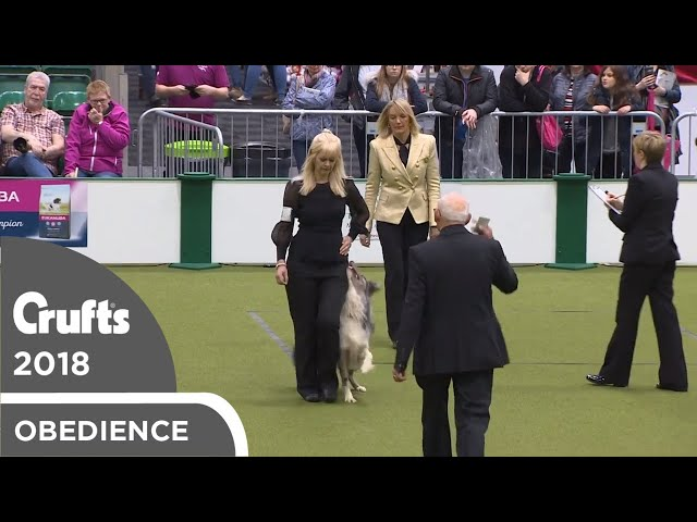Obedience - Dog Championship - Part 5 | Crufts 2018