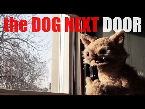 """This cat is NED Episode 10, """"The Dog Next Door"""""""