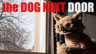 "This Cat Is Ned Episode 10, ""the Dog Next Door"""