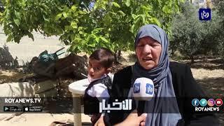 اللزاقيات سيدة حلويات العيد في محافظة الطفيلة - (17-6-2018)