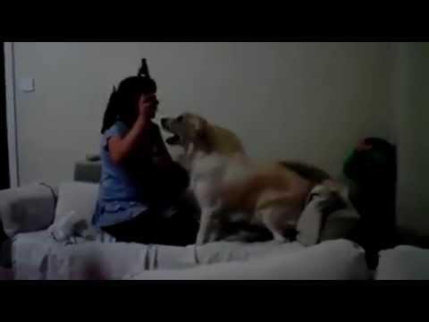 Сикис свбака и жувотни девушка фото 405-442