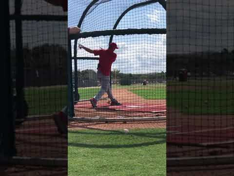 The Fast Lane at Spring Training 2020 : Goldy Batting Practice