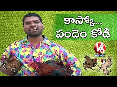 Bithiri Sathi On Cockfight | Sankranti Festival Celebrations | Teenmaar News | V6 News