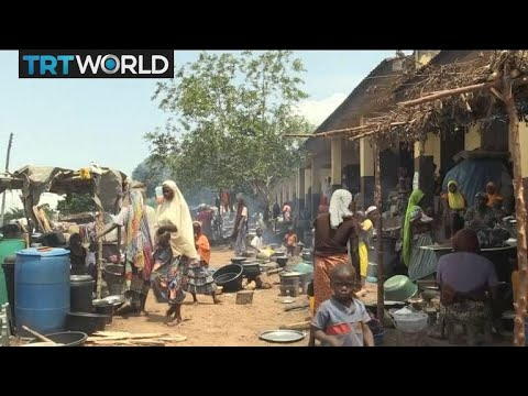 Nigeria Floods: Severe floods wipe out farms and homes