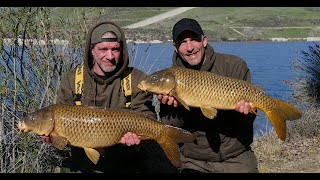 California Adventure - carp fishing blog, Feb 2019