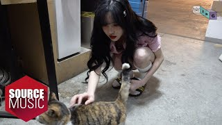Download [G-ING] Play With a Cat - GFRIEND (여자친구)