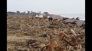 La playa de Malgrat de Mar cercana al Tordera, repleta de residuos