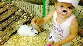 Смотреть видео Контактный зоопарк Смотрим животных в контактном зоопарке Террариум онлайн