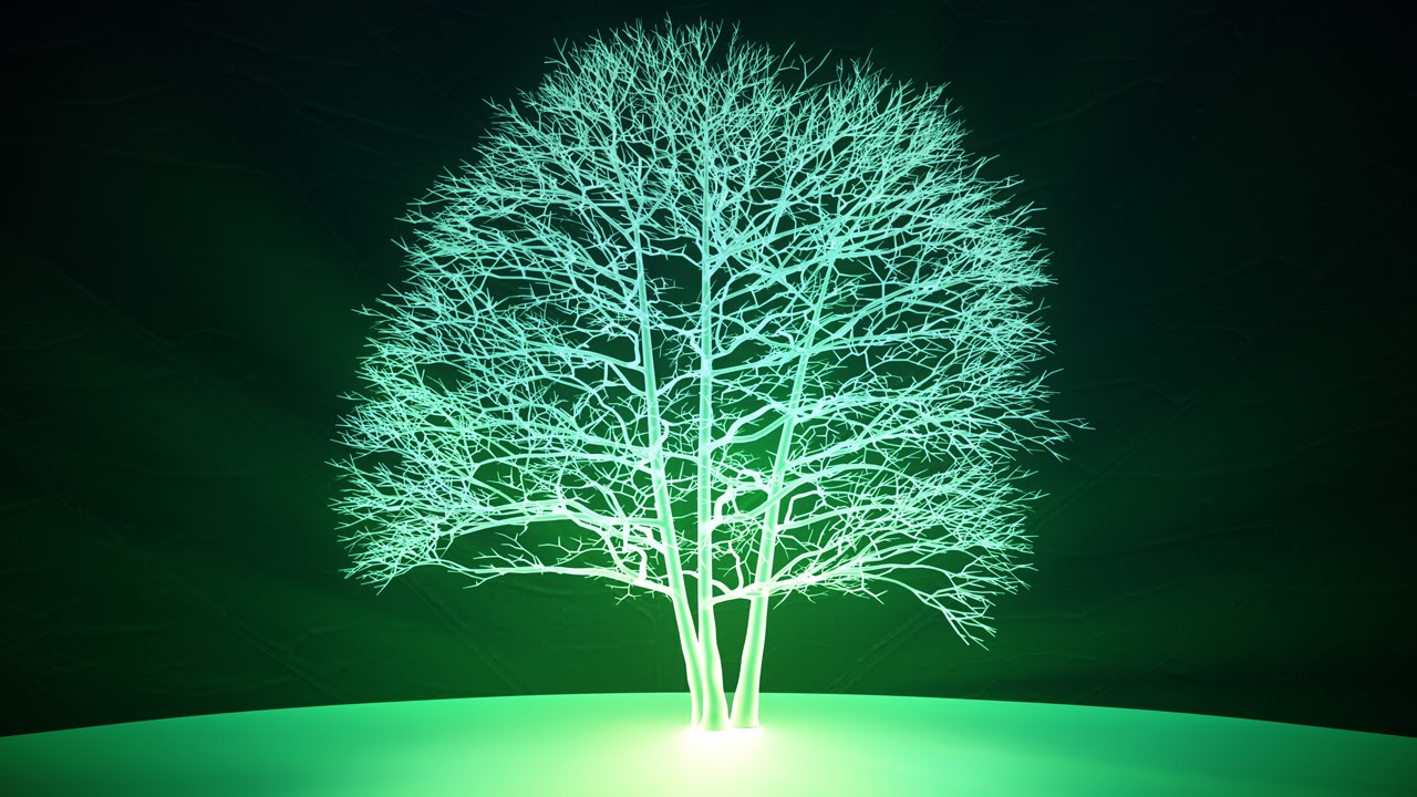 Image result for glowing plant