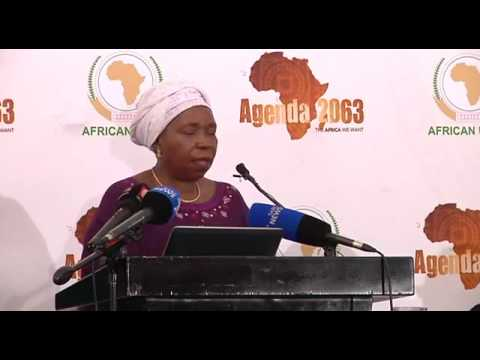 State of the Continent Media Briefing speech   Dr Nkosazana