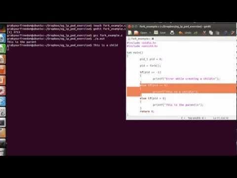 "OpenGyan - Linux Programming ""fork"""