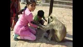 crazy indian girl