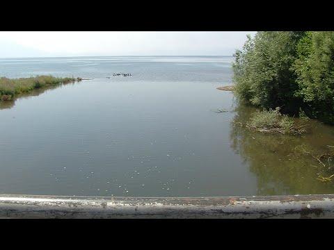 реките носат лоша крв во срцето на охридското езеро