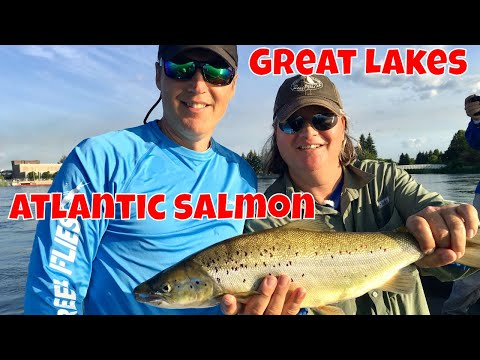 Great Lakes Atlantic Salmon Fishing | Ontario