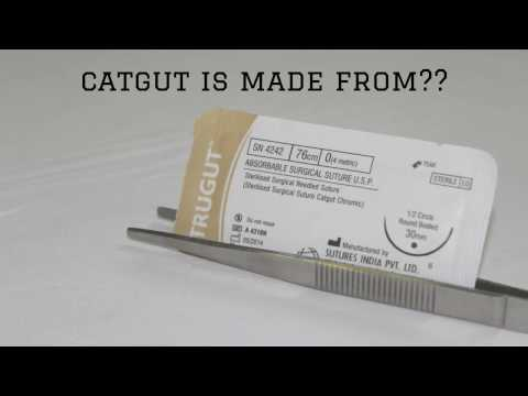 suture materials - catgut