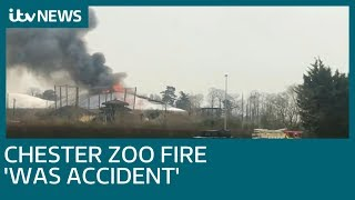 Donations target smashed after animals die in Chester Zoo fire | ITV News