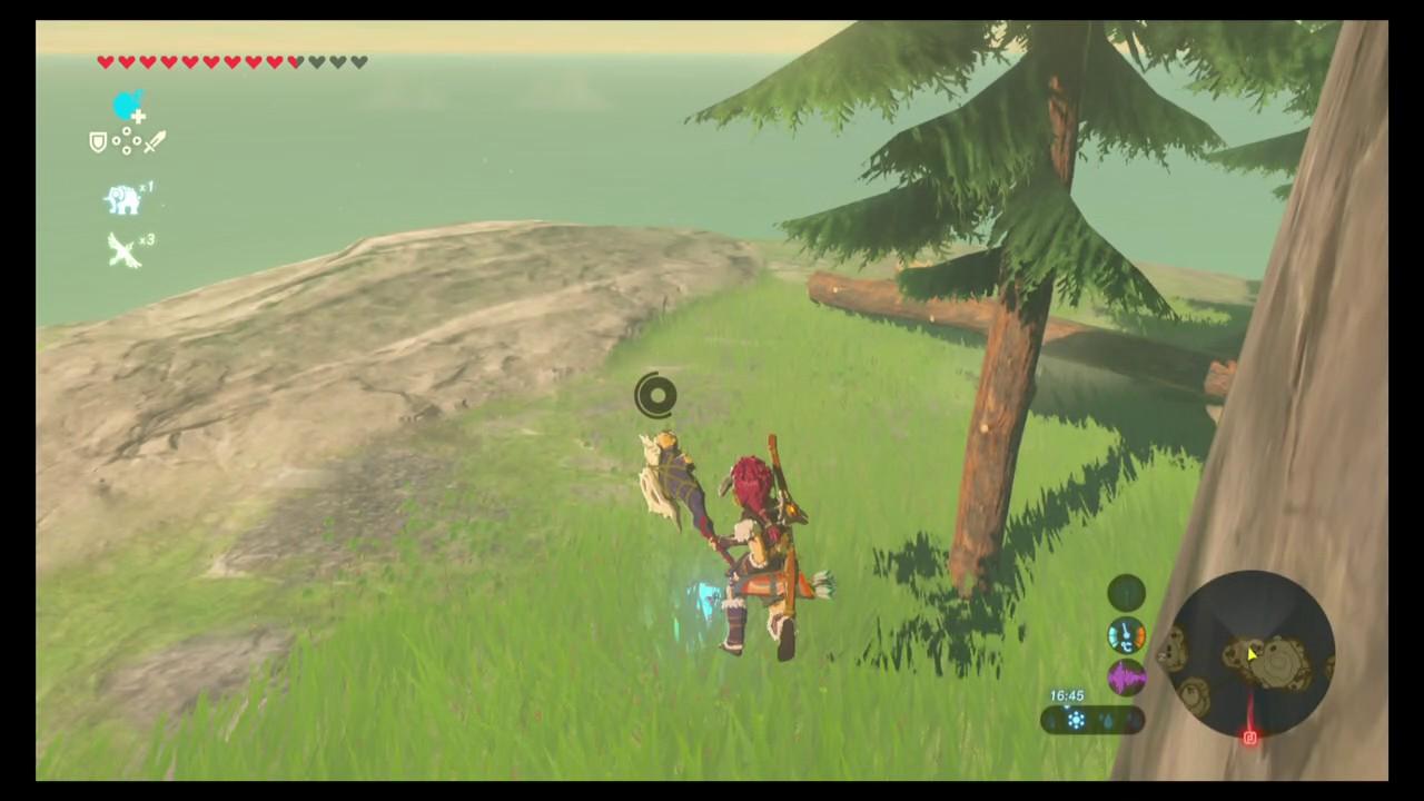 Comment Avoir Zelda Breath Of The Wild Sur Pc