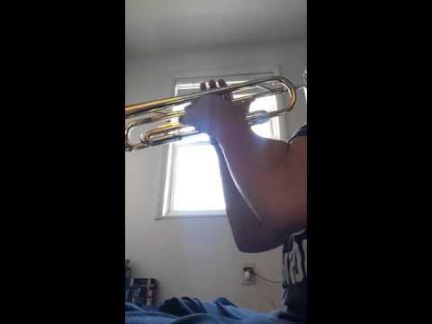Dance celebration | Trumpet Version