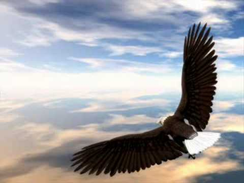 Lenny Kravitz-Fly away