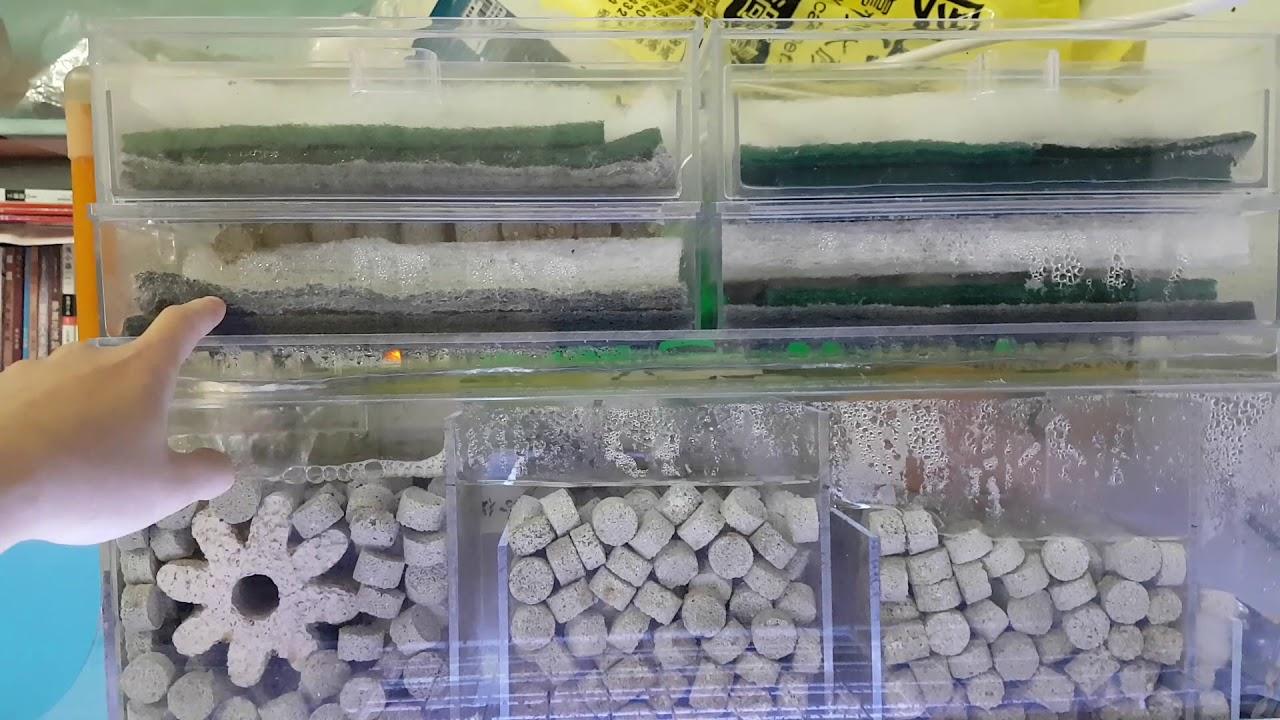 乾濕分離 過濾介紹 Fish Tank Filter Setup lọc nước cho bể cá(80*40*40cm) - YouTube