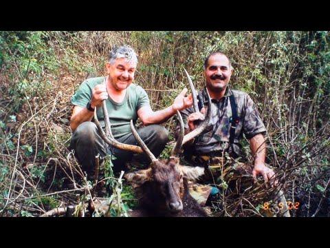 Hunting Rusa deer in New Caledonia part 8