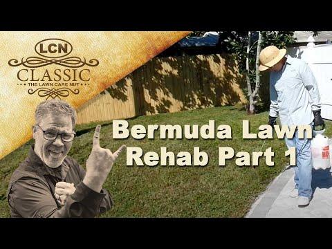 Southern Lawn Rehab - Bermuda - Part 1