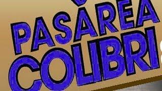 Pasarea Colibri-Aniversare 10 ani