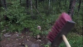 [FUNNY] Finnish man scares a bear away by shouting PERKELE [2017] thumbnail